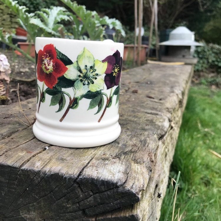 Gardening and wellbeing on the frontline 2
